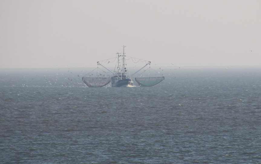 Fishing boat on the North Sea between Cuxhaven and Helgoland. Photo by: Dragonfly Leathrum