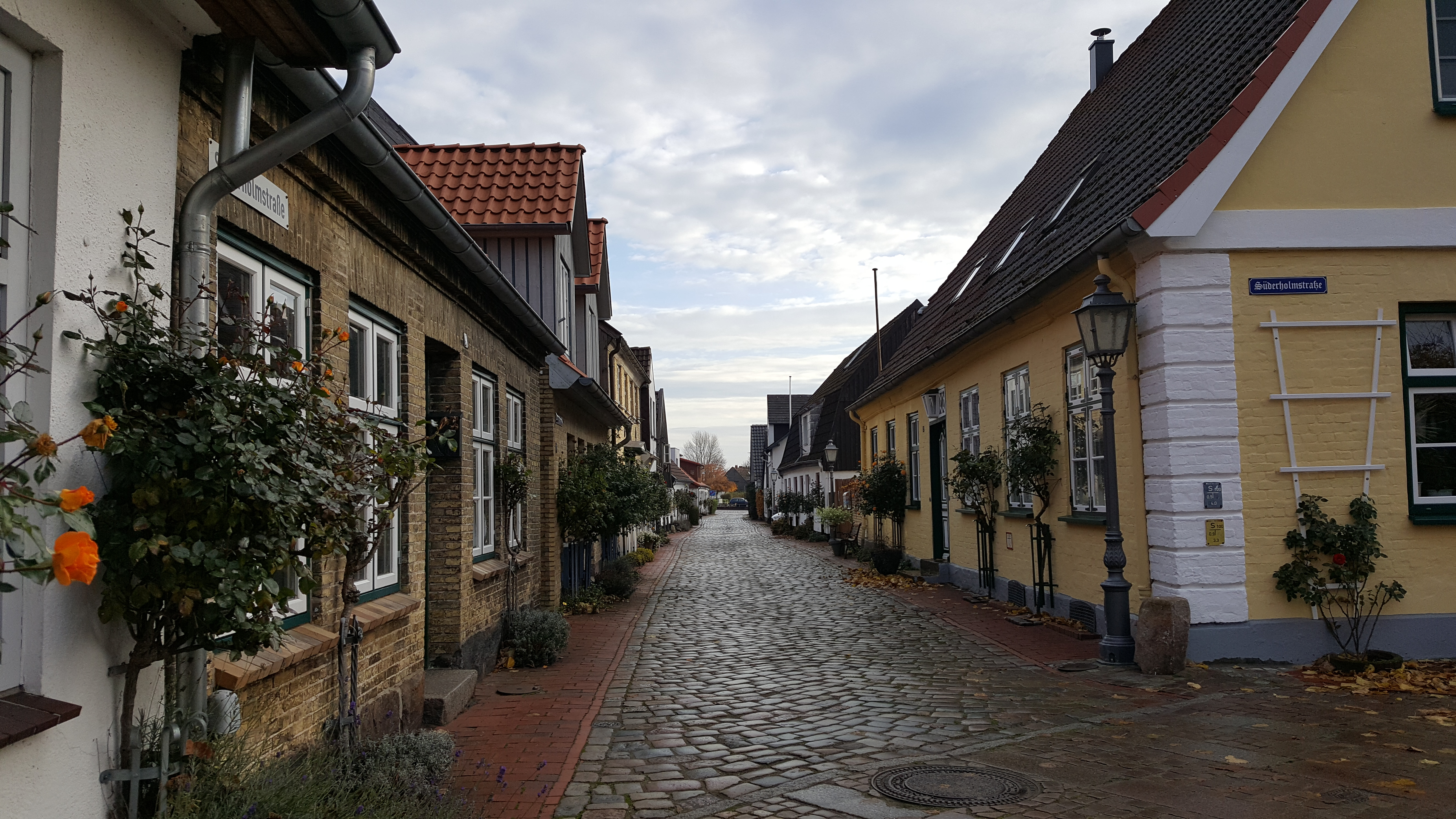 A lane in Holm. Notice the rose bushes trained against the houses. Photo by Dragonfly Leathrum