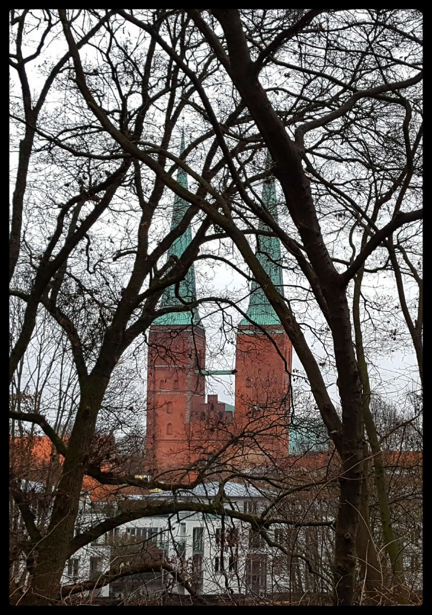 The Dom through the trees. Photo by Dragonfly Leathrum