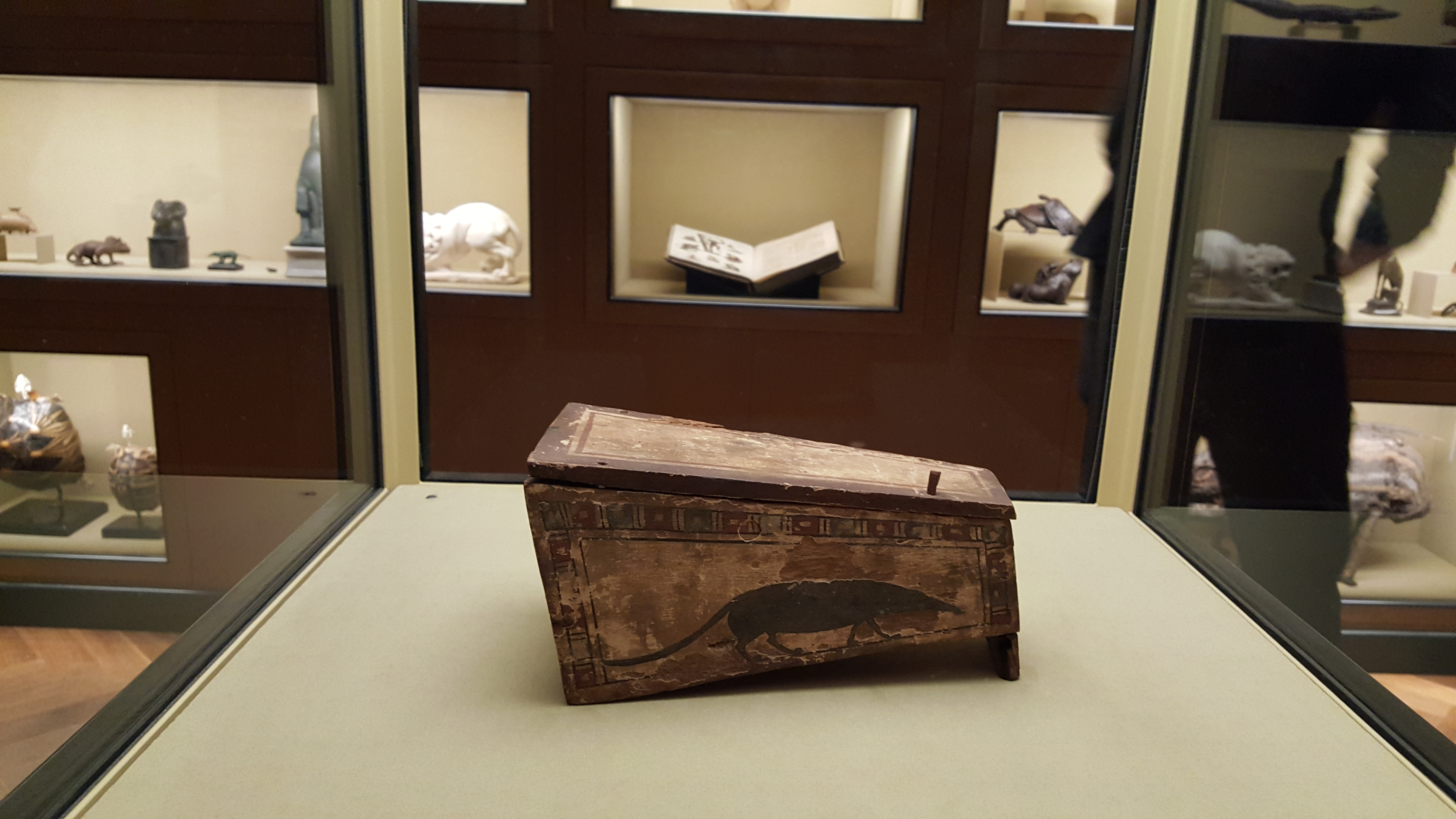 The piece for which the exhibit is named. Spizmaus Mummy in a Coffin. (The spitzmaus wasn't actually inside.)