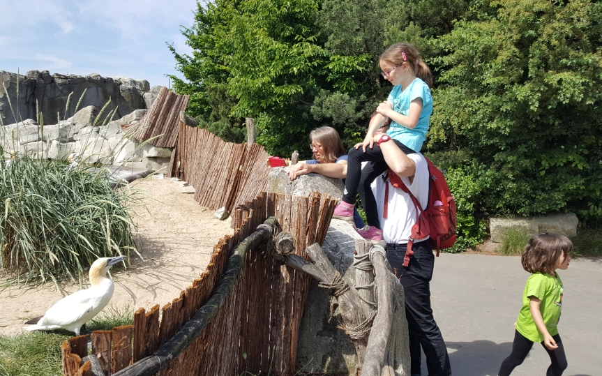 Next was the Bremerhaven zoo. Five year old asks who wants to look at an old bird when there are pumas over there! Photo by Dragonfly Leathrum