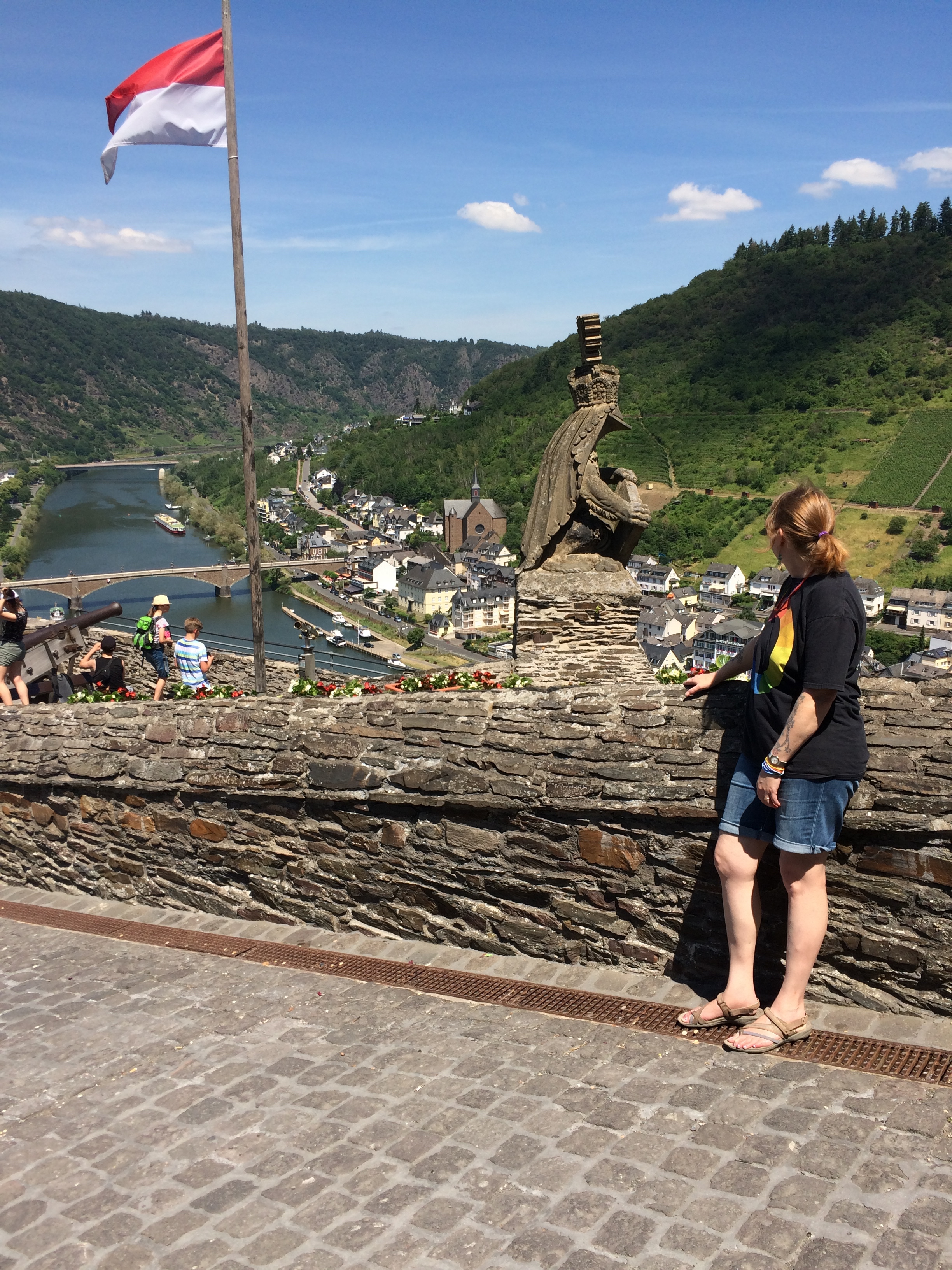 View of Cochem and the Moselle from Reichsburg Castle. Photo by Andreas Muenchow
