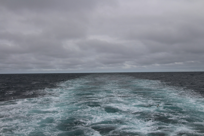 August 25, 2018, 3:15pm, Denmark Strait. Photo by Dragonfly Leathrum