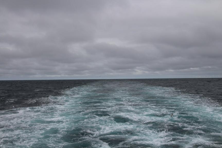 August 25, 2018, 3:15pm, Denmark Strait. Photo by Dragonfly Leathrum