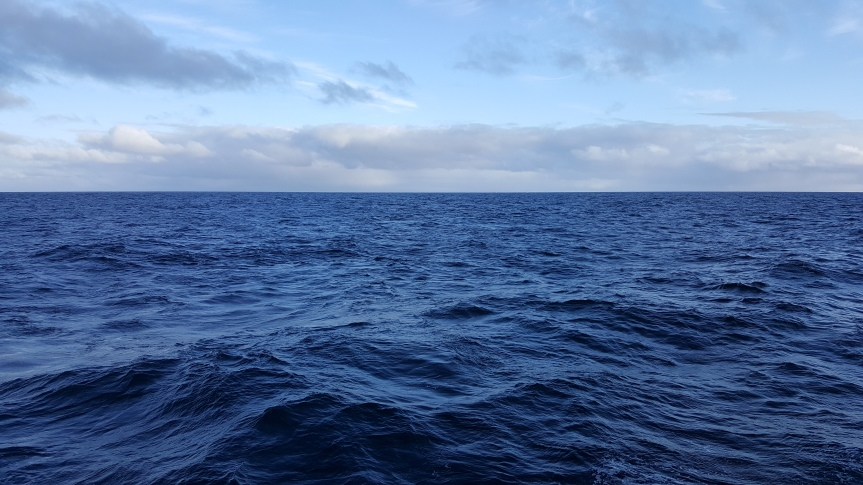 September 7, 2:26pm, Fram Strait. Photo by Dragonfly Leathum