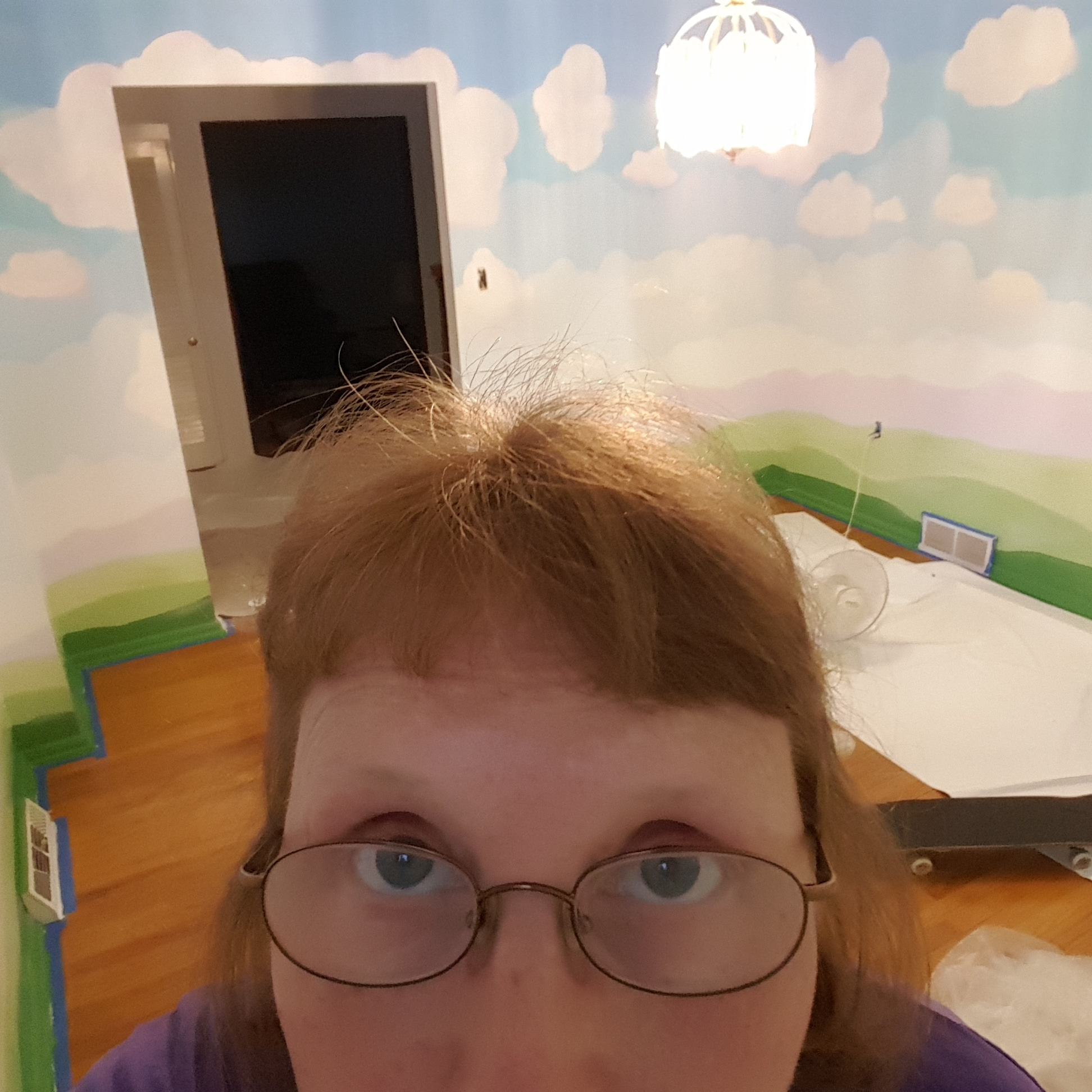 During painting the dining room. Do I look tired? I AM! The room was hand painted with a brush. Every color has two coats of paint.